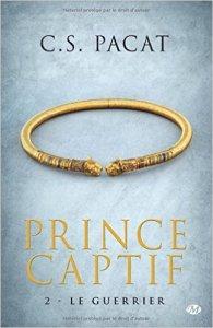 Le Guerrier (Prince Captif, Tome 2 )